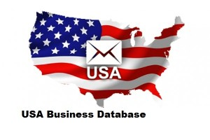 USA Business Email Marketing Lists